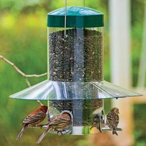 Sheltered Songbird Feeder