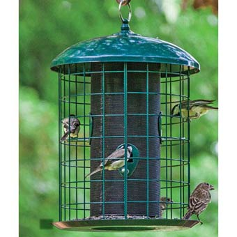 Squirrel-Proof Caged Feeder